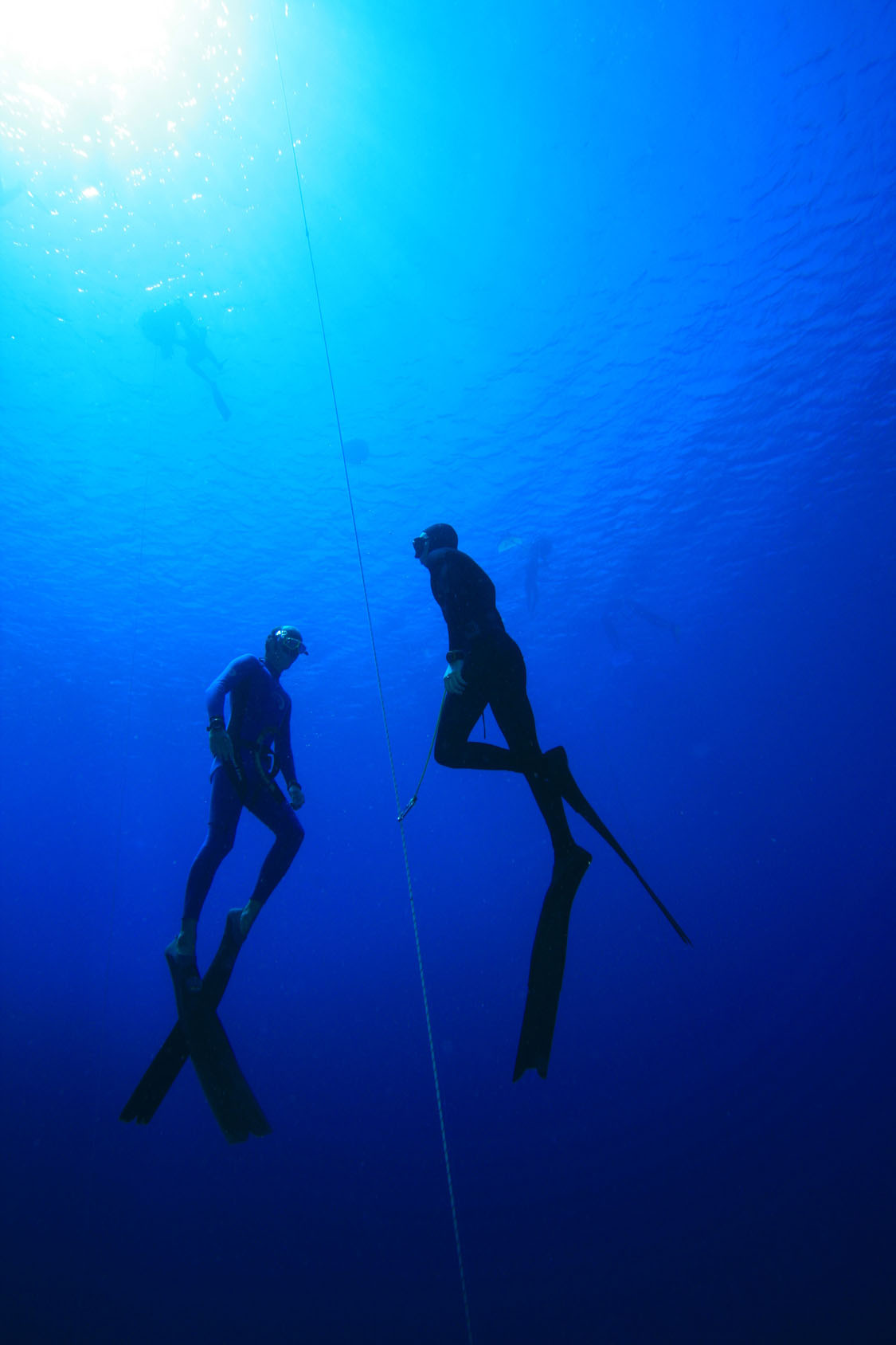 Freediving Club Took The Plunge Offering Free Safety Training