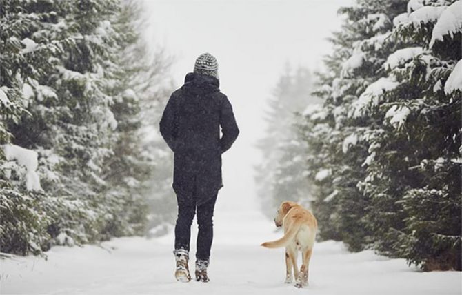 Health Benefits of Winter Walks